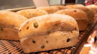 BURDIGALA(ブルディガラ)のパンドオリーブが美味しくて涙するレベル。
